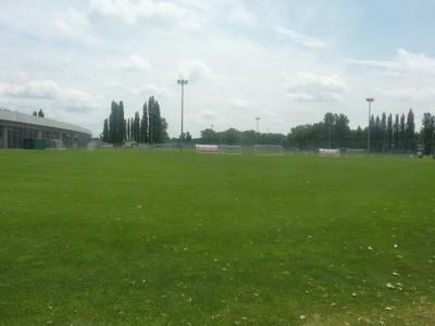 Rasenpilz beeinträchtigt Spiele der Sky Go Erste Liga